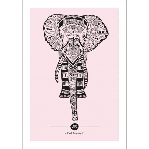 Inca elephant